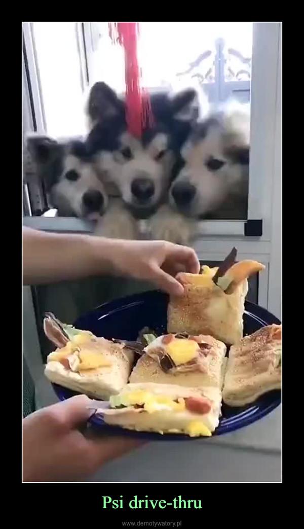 Psi drive-thru –