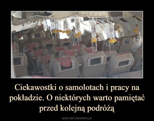 Ciekawostki o samolotach i pracy na pokładzie. O niektórych warto pamiętać przed kolejną podróżą