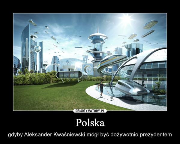 Polska – gdyby Aleksander Kwaśniewski mógł być dożywotnio prezydentem