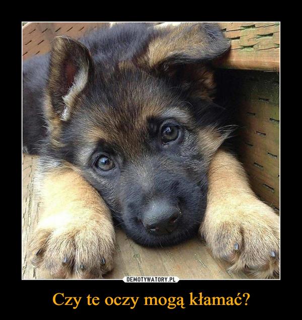 Czy te oczy mogą kłamać? –