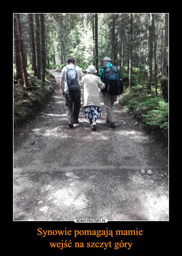 Synowie pomagają mamie wejść na szczyt góry –