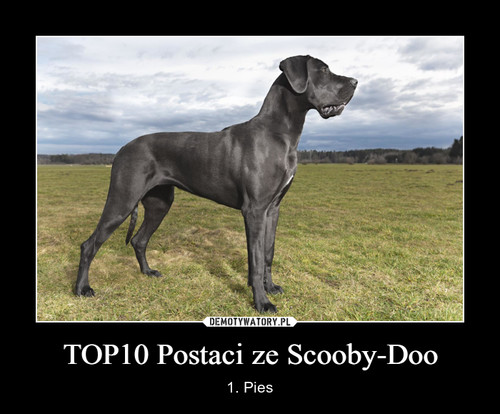 TOP10 Postaci ze Scooby-Doo