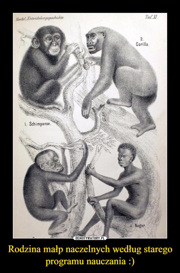 Rodzina małp naczelnych według starego programu nauczania :) –