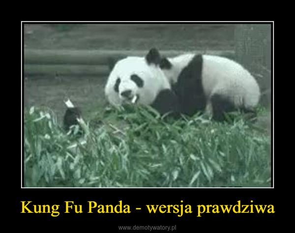 Kung Fu Panda - wersja prawdziwa –