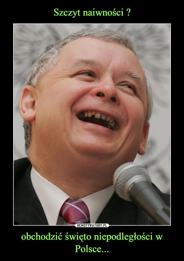 obchodzić święto niepodległości w Polsce... –