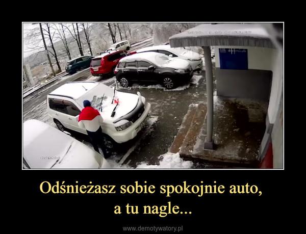 Odśnieżasz sobie spokojnie auto, a tu nagle... –