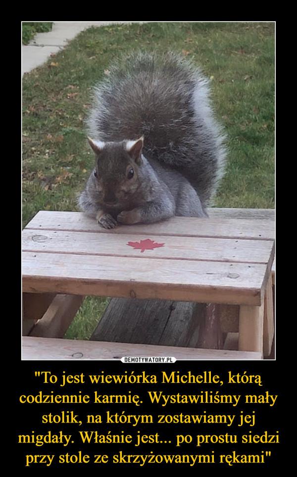 """""""To jest wiewiórka Michelle, którą codziennie karmię. Wystawiliśmy mały stolik, na którym zostawiamy jej migdały. Właśnie jest... po prostu siedzi przy stole ze skrzyżowanymi rękami"""""""
