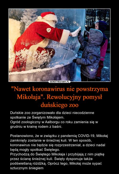 """""""Nawet koronawirus nie powstrzyma Mikołaja"""". Rewolucyjny pomysł duńskiego zoo"""