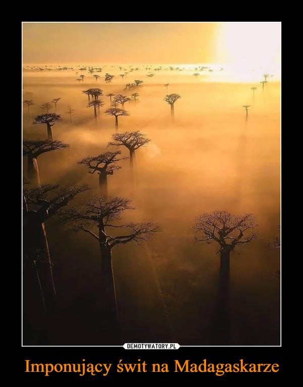 Imponujący świt na Madagaskarze –