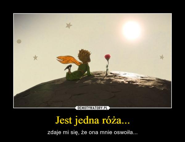Jest jedna róża... – zdaje mi się, że ona mnie oswoiła...