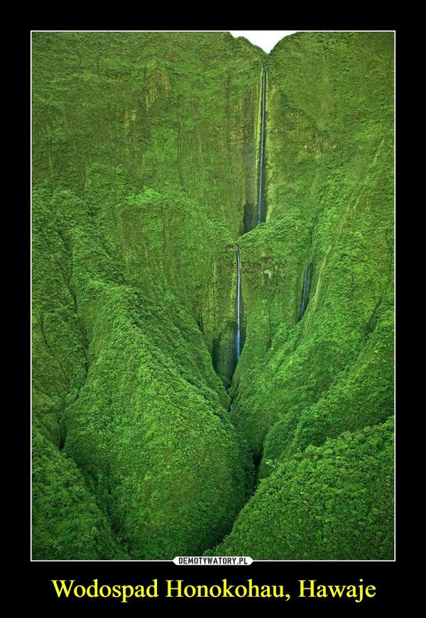 Wodospad Honokohau, Hawaje –
