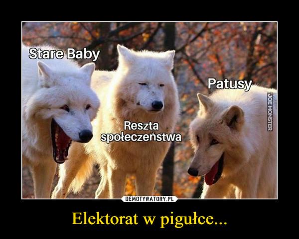Elektorat w pigułce... –  Stare BabyPatusyReszta społeczeństwa