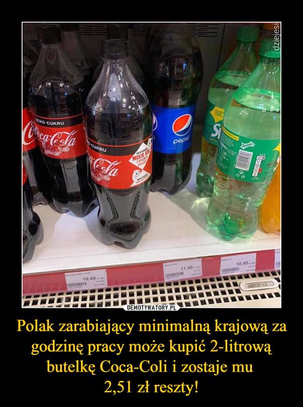 Polak zarabiający minimalną krajową za godzinę pracy może kupić 2-litrową butelkę Coca-Coli i zostaje mu 2,51 zł reszty! –