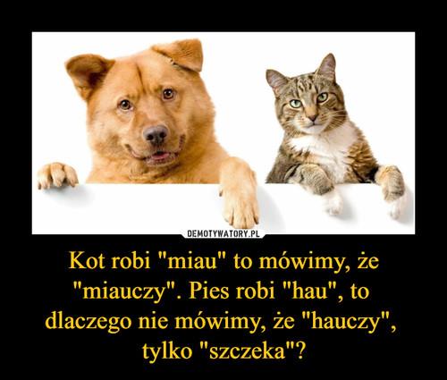 """Kot robi """"miau"""" to mówimy, że """"miauczy"""". Pies robi """"hau"""", to  dlaczego nie mówimy, że """"hauczy"""",  tylko """"szczeka""""?"""