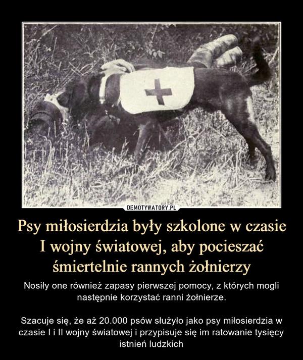 Psy miłosierdzia były szkolone w czasie I wojny światowej, aby pocieszać śmiertelnie rannych żołnierzy – Nosiły one również zapasy pierwszej pomocy, z których mogli następnie korzystać ranni żołnierze.Szacuje się, że aż 20.000 psów służyło jako psy miłosierdzia w czasie I i II wojny światowej i przypisuje się im ratowanie tysięcy istnień ludzkich