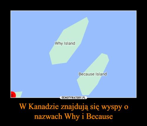W Kanadzie znajdują się wyspy o nazwach Why i Because