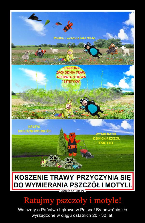 Ratujmy pszczoły i motyle! – Walczmy o Państwo Łąkowe w Polsce! By odwrócić zło wyrządzone w ciągu ostatnich 20 - 30 lat.
