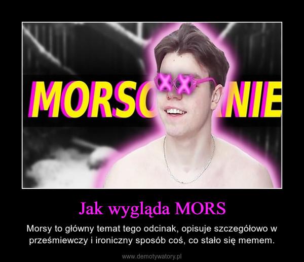 Jak wygląda MORS – Morsy to główny temat tego odcinak, opisuje szczegółowo w prześmiewczy i ironiczny sposób coś, co stało się memem.