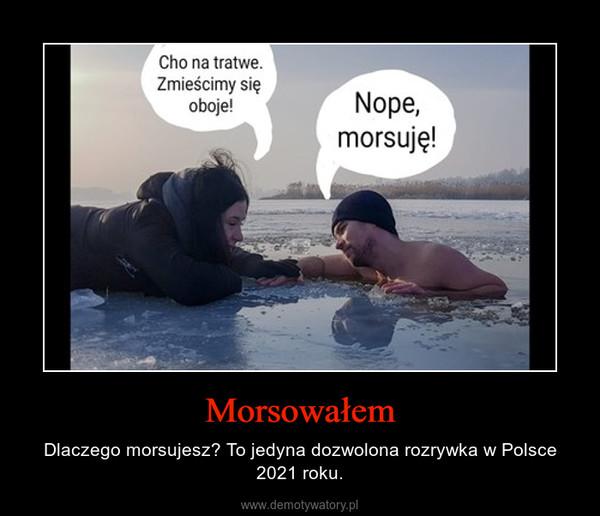 Morsowałem – Dlaczego morsujesz? To jedyna dozwolona rozrywka w Polsce 2021 roku.