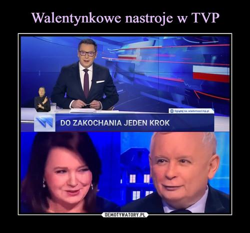 Walentynkowe nastroje w TVP