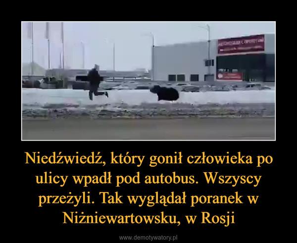 Niedźwiedź, który gonił człowieka po ulicy wpadł pod autobus. Wszyscy przeżyli. Tak wyglądał poranek w Niżniewartowsku, w Rosji –