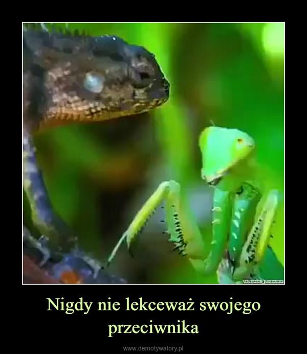 Nigdy nie lekceważ swojego przeciwnika –
