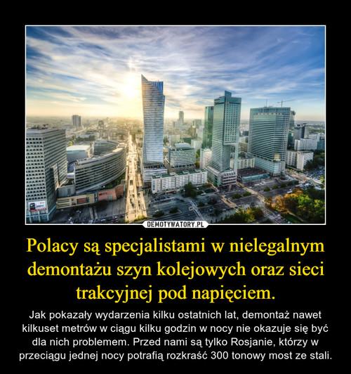 Polacy są specjalistami w nielegalnym demontażu szyn kolejowych oraz sieci trakcyjnej pod napięciem.
