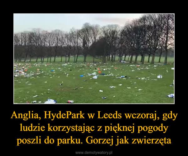 Anglia, HydePark w Leeds wczoraj, gdy ludzie korzystając z pięknej pogody poszli do parku. Gorzej jak zwierzęta –