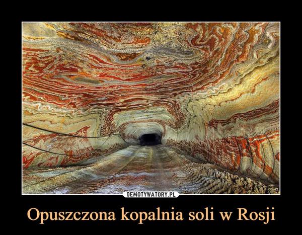 Opuszczona kopalnia soli w Rosji –