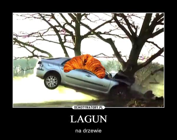 LAGUN – na drzewie