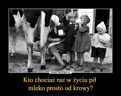 Kto chociaż raz w życiu pił  mleko prosto od krowy?