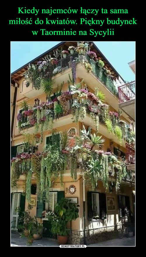 Kiedy najemców łączy ta sama miłość do kwiatów. Piękny budynek w Taorminie na Sycylii