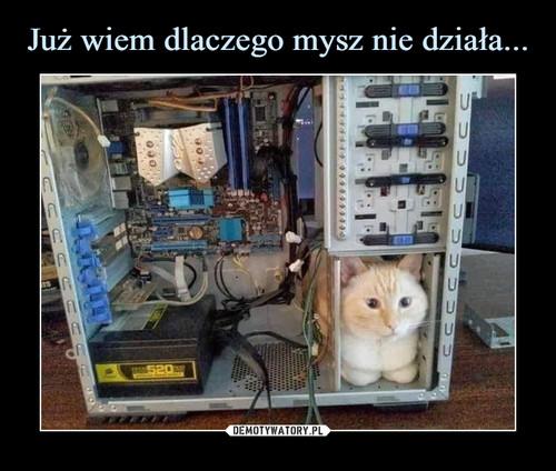 Już wiem dlaczego mysz nie działa...