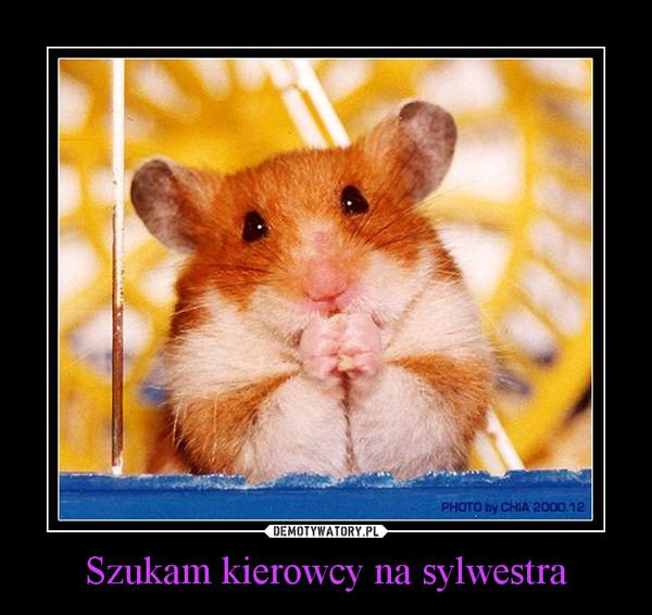 szukam pana na sylwestra Wrocław