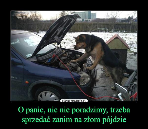 1550568381_ffnslk_600.jpg