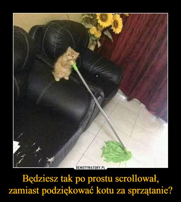 Będziesz tak po prostu scrollował, zamiast podziękować kotu za sprzątanie?